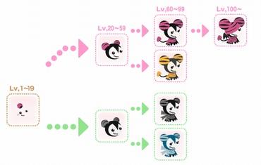 エクラド成長図.jpg